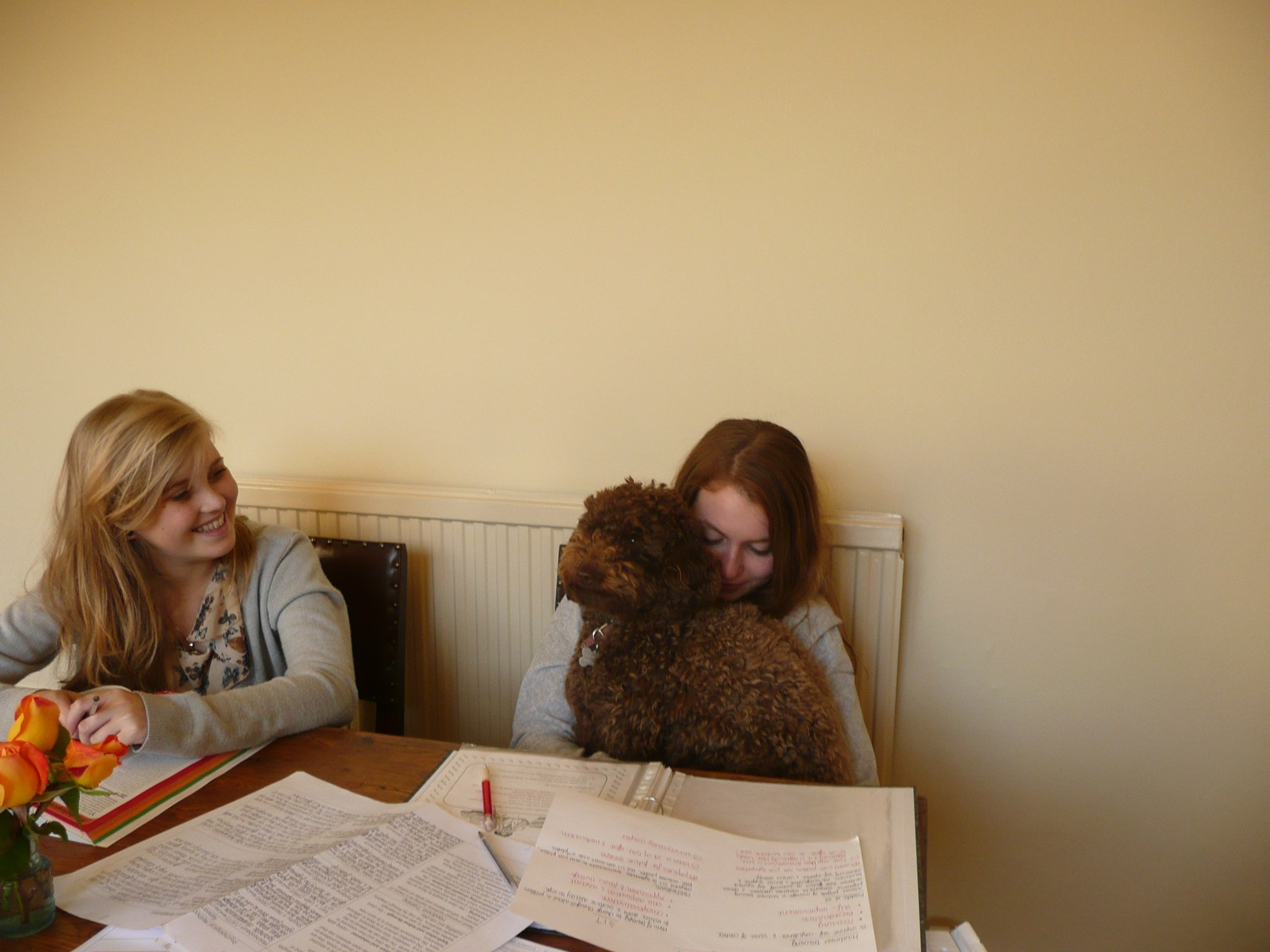 Helen studying with Julia and Luna!