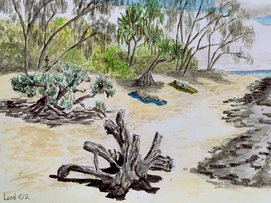 As we were waiting for the boat to return to Brisbane after our field trip to Heron Island, Penny, Mike and I (and I'm probably forgetting others) went swimming and reading at the beach. Mike went off with his sketch pad instead!