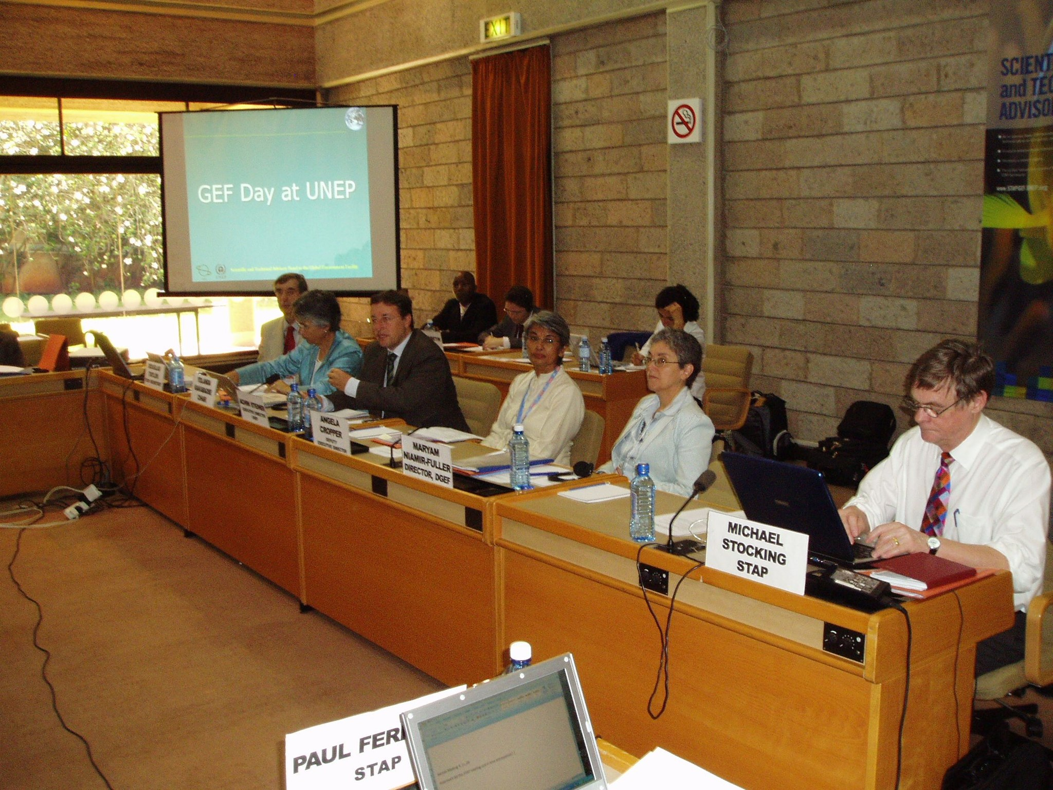 Angela at a GEF-STAP Meeting in UNEP - Nairobi, 2006