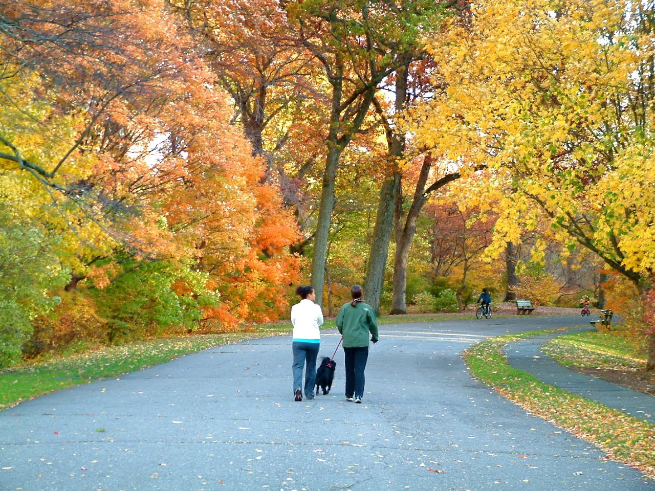 Marjorie, Sheba, and Rebecca in the Arboretum in 2010. We loved our walks & chats with M! <3 Kendra