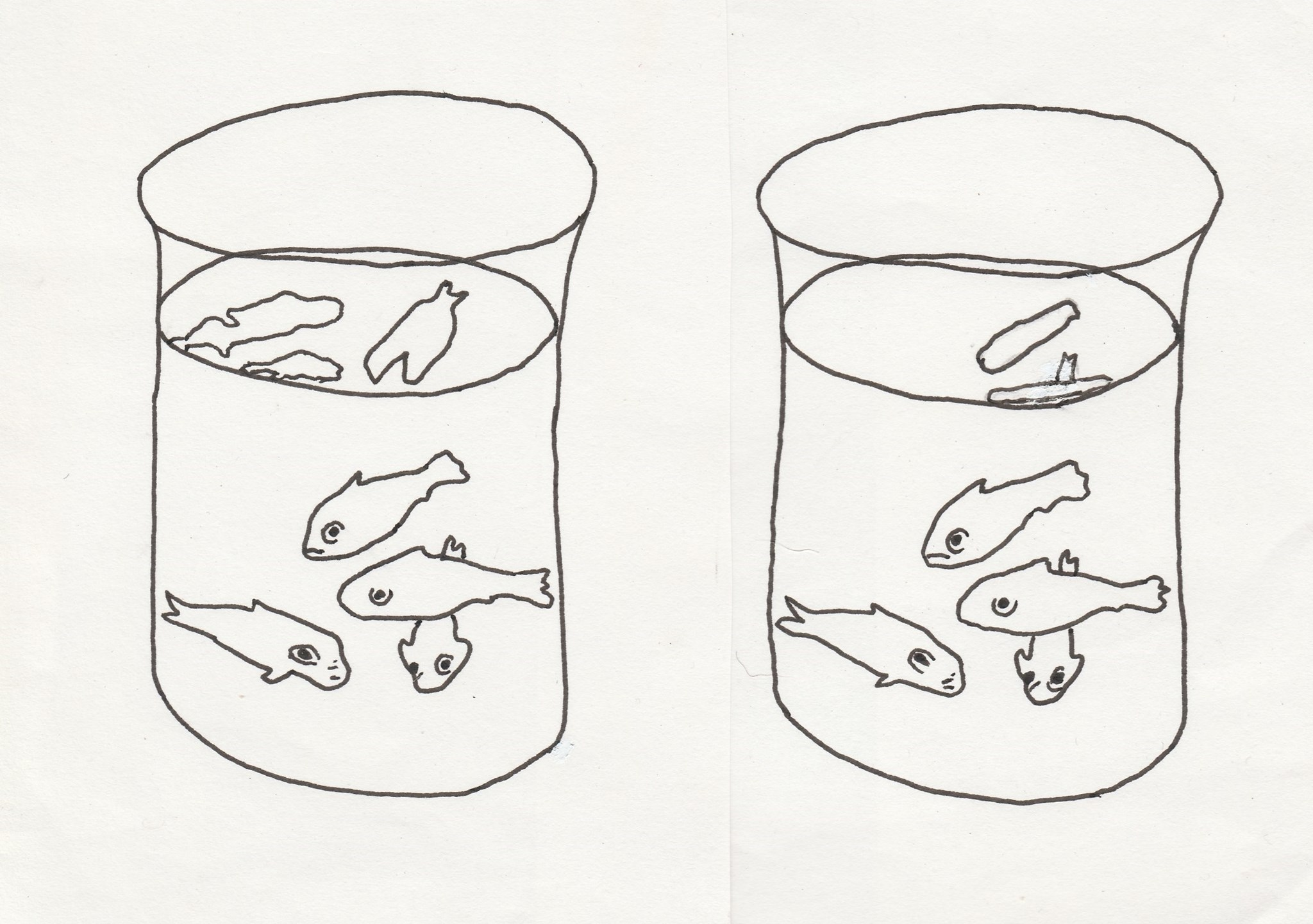 Matisse's goldfish (left), Alan's correction (right)