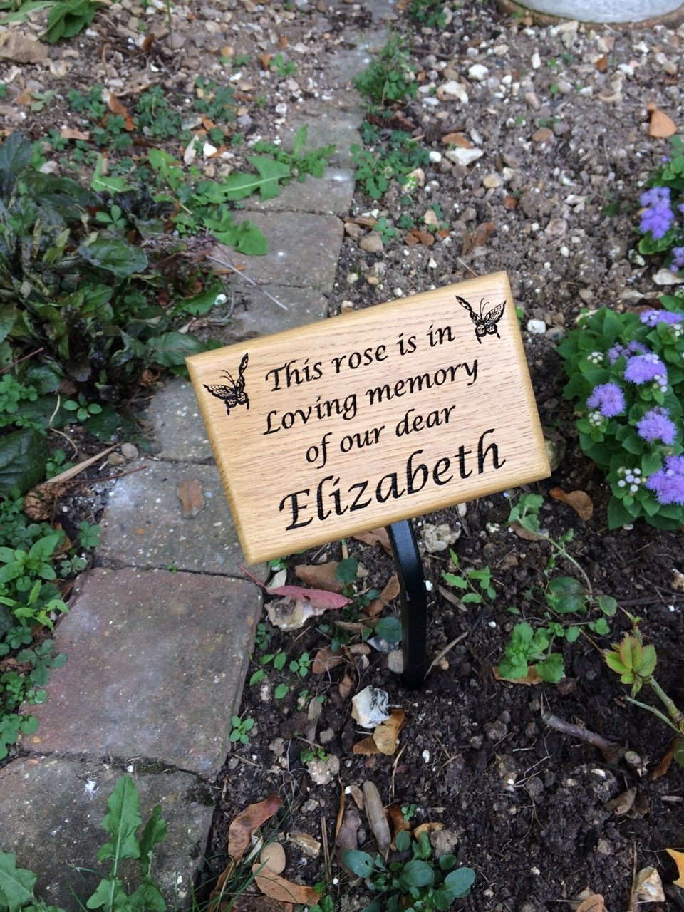 Elizabeth's rose plaque in St Vincent de Paul School garden