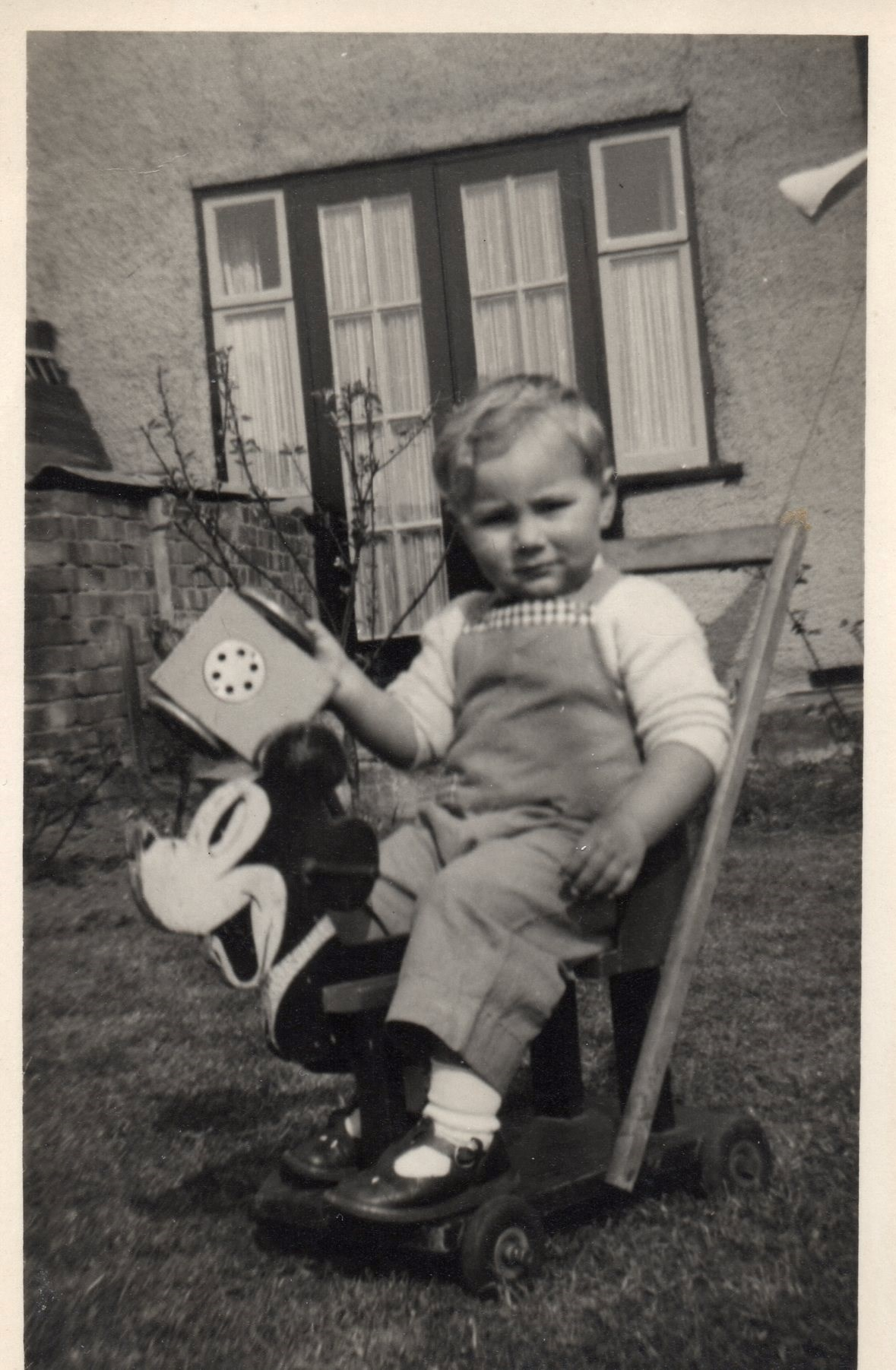 Stanley at 2 years old