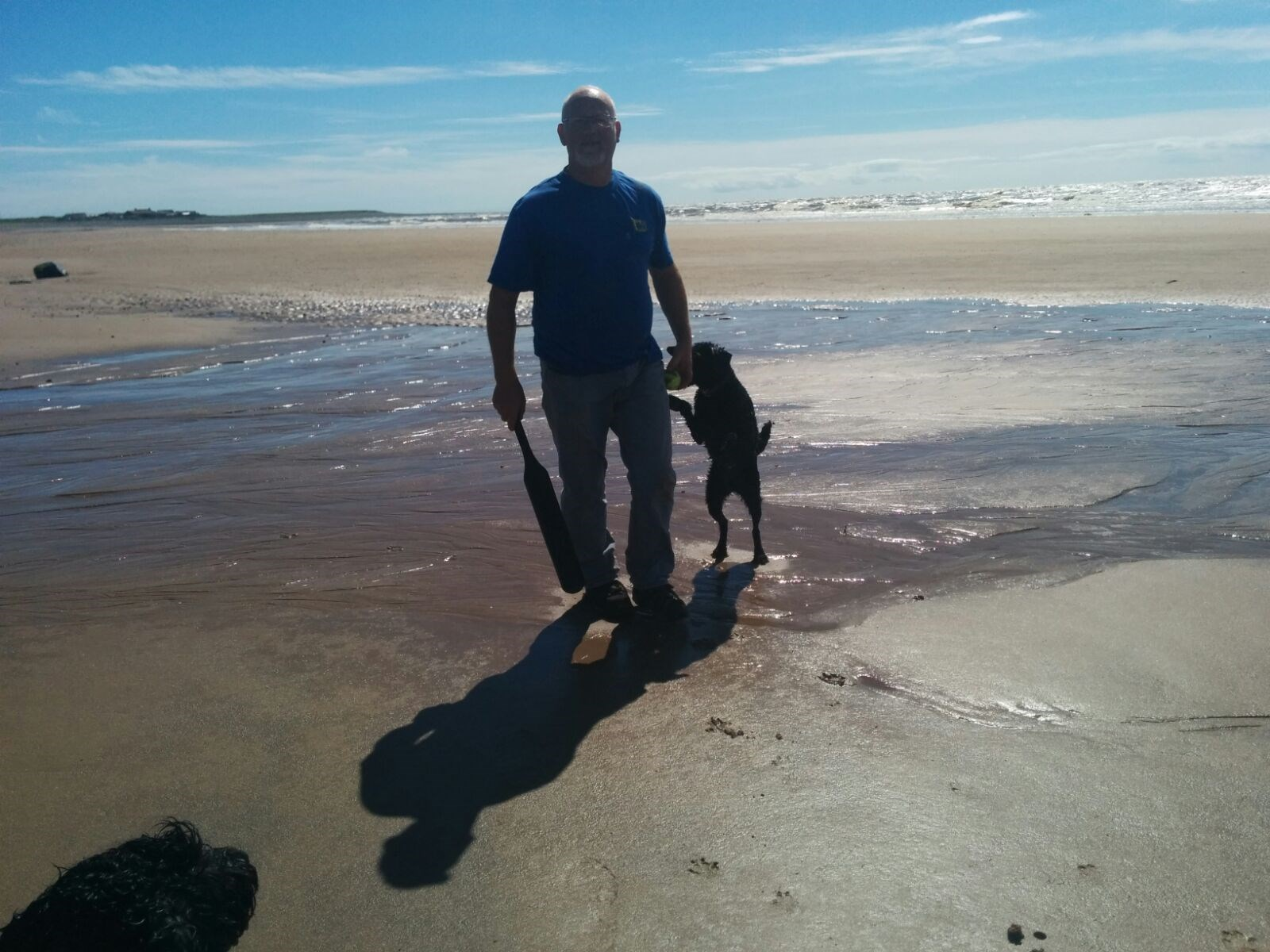 Happy in Cumbria with his dogs