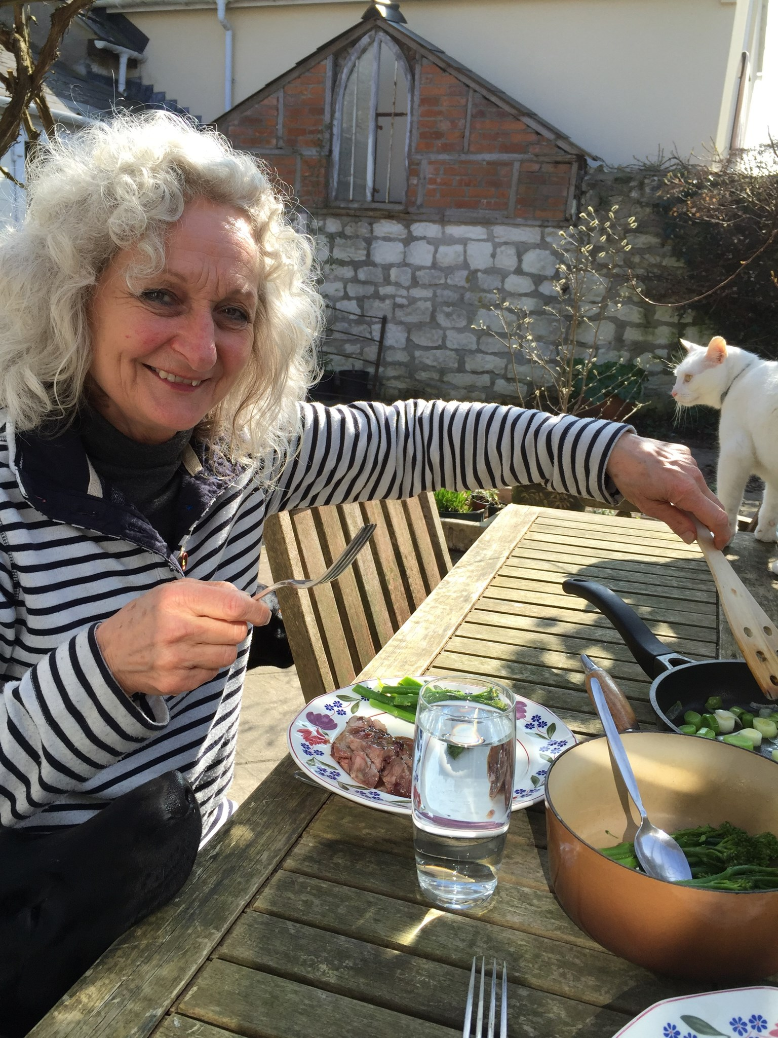 Sunny Sunday lunch with  cat and labrador nose