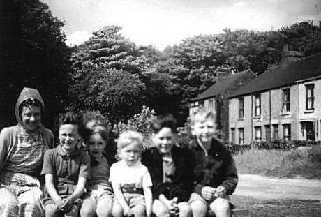 Cousins.   Valerie, Sue, George, William, Malcolm, and Allan on Hessle Cliffe