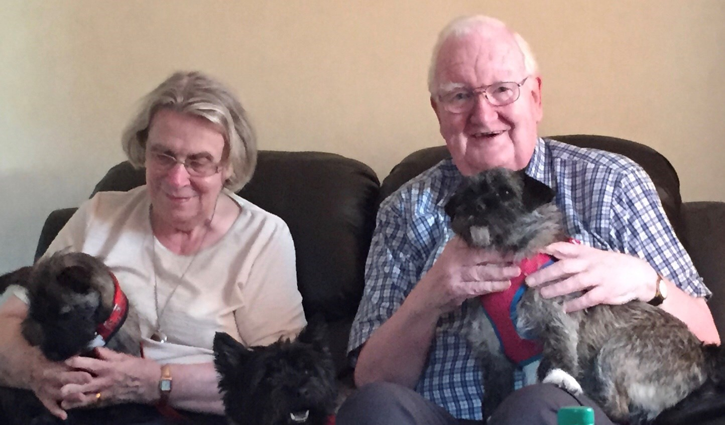 Mom always missed having a dog, but our 3 kept them busy - dad secretly loved having them around!