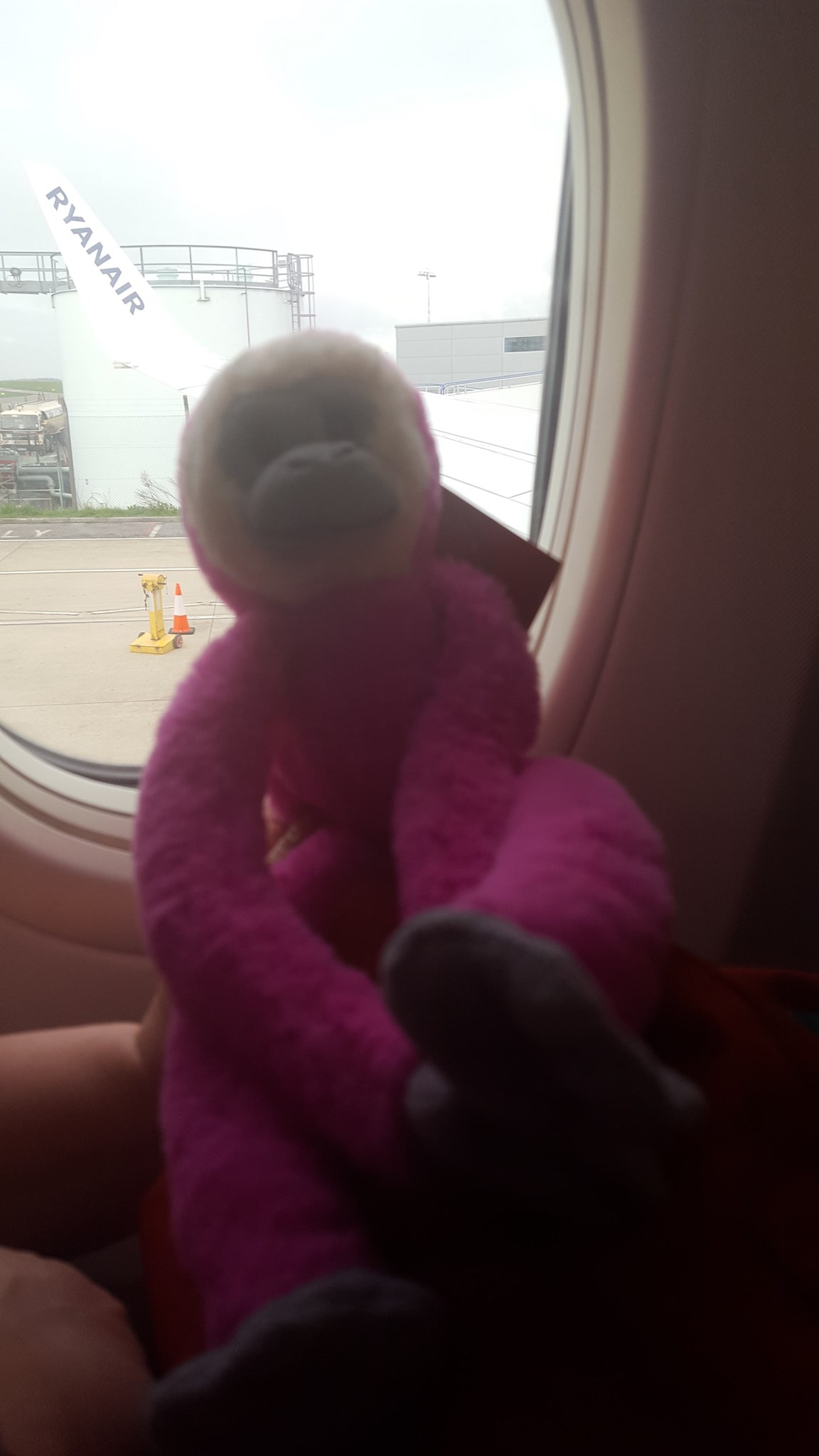 I did it.. i got on the plane and even monkey came along on the plane to Dublin Naomi ? ??