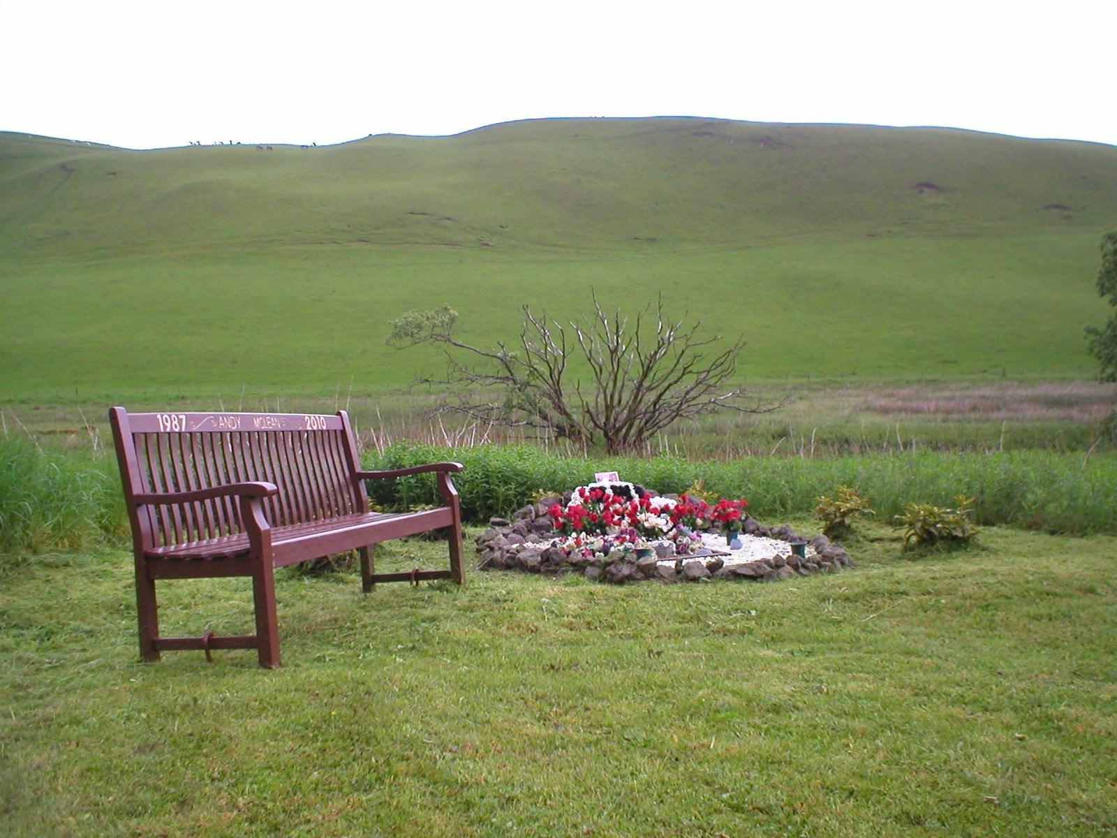 ANDYS MEMORIAL at the place where he died.