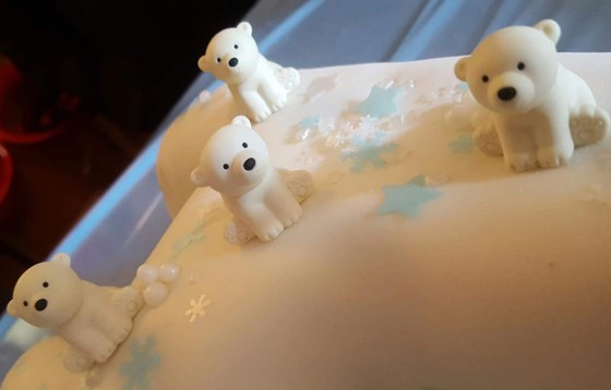 Polar Bears ready for cake