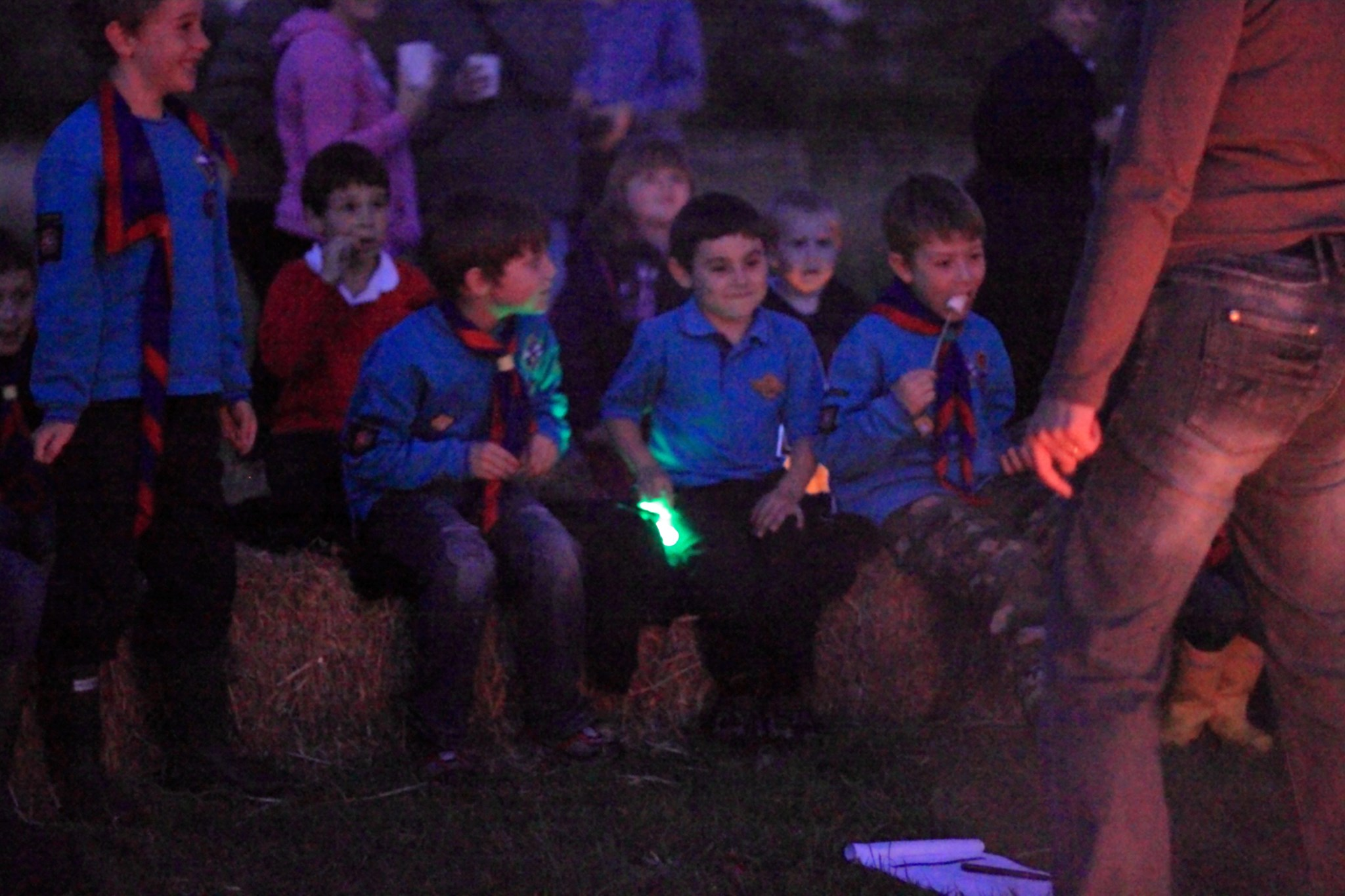 2011 Campfire with Beavers