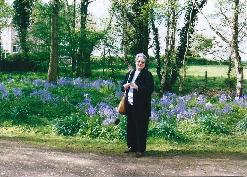 Gini, my traveling buddy, in a field of bluebells in Ireland in 2005