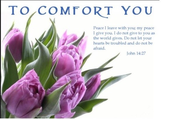 To Comfort You....
