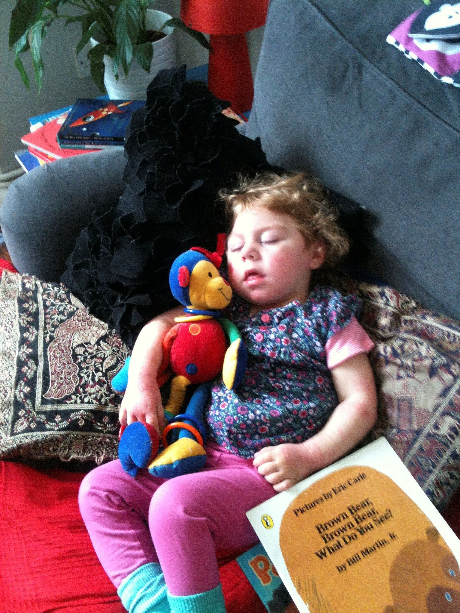 Snoozing with Trisha monkey having read her favourite book
