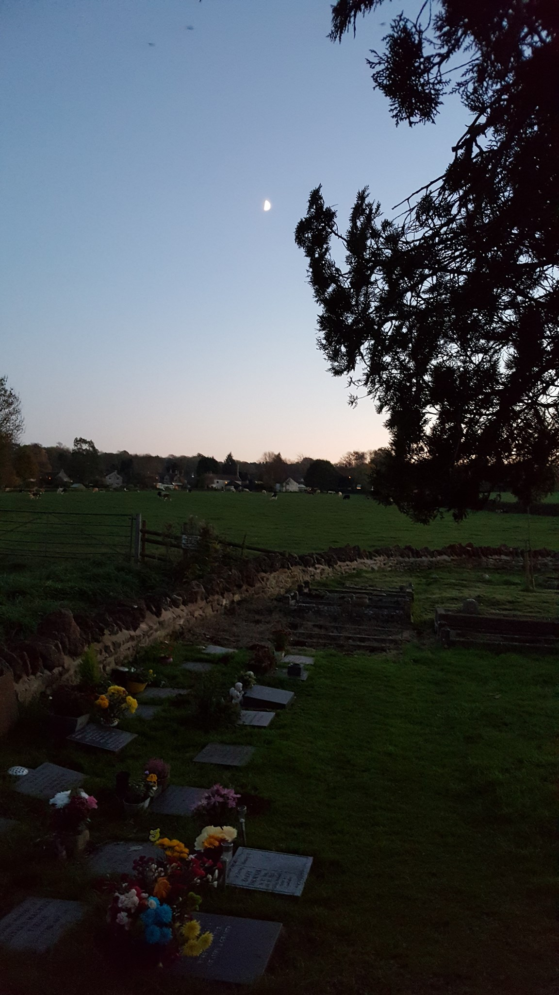 View across field looking out from Chilcompton Church
