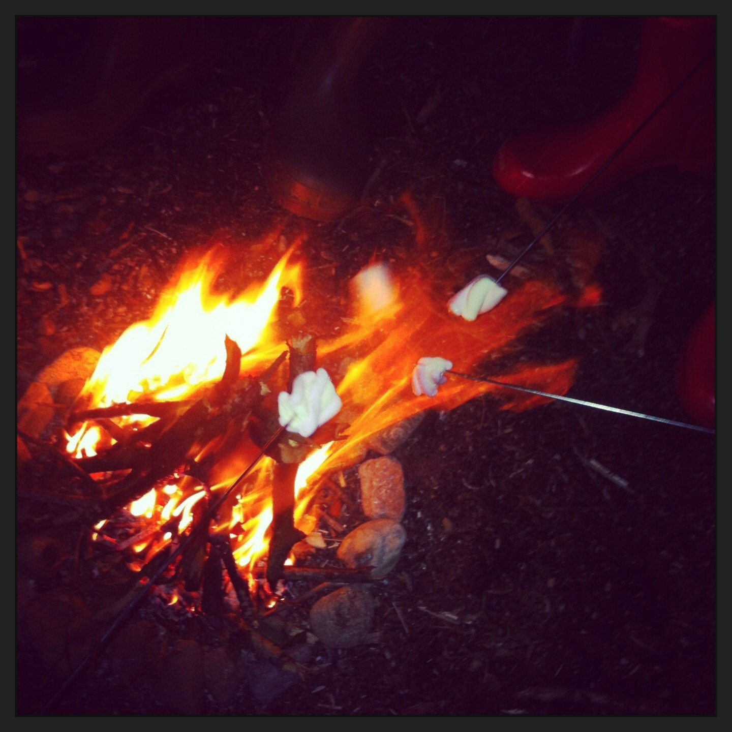 The wonderful memories, us 4 toasting marshmallows round the fire at the log cabin xx
