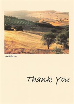 Our 'thank you' card to friends and family