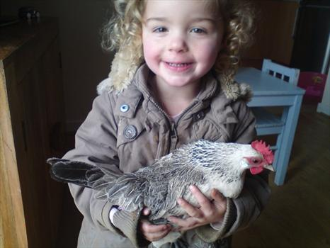 Alix cuddling one of the chickens