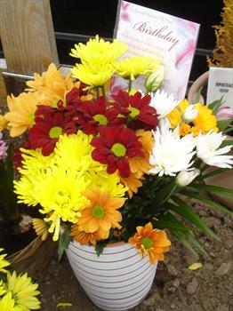 """Paul's """"Birthday"""" flowers from the family"""