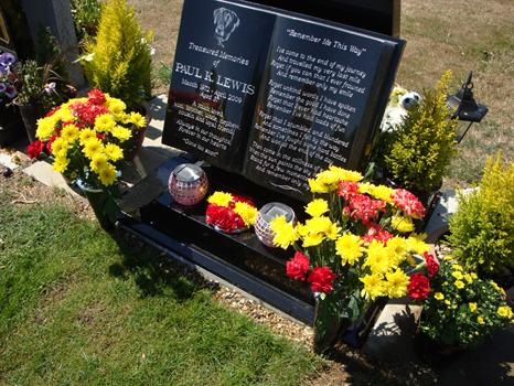 """Paul's """"Spanish Flag"""" posy and flowers to celebrate Spain reaching the World Cup Final"""