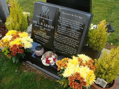 Paul's flowers on a bright, sunny autumn day  - 15th November 2010