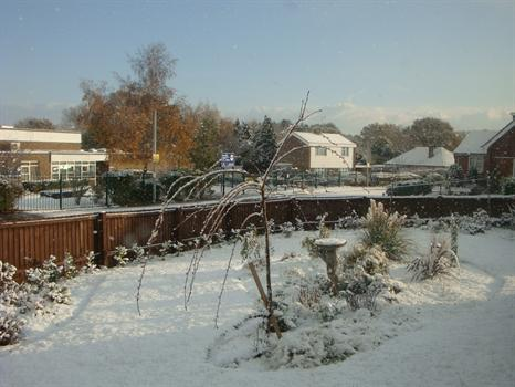 """The first snow of winter in my """"new"""" garden, designed by Nicola & created last year in Paul's memory"""