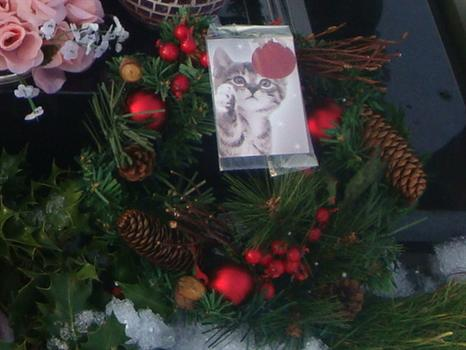 A bright, festive Christmas wreath from Auntie Pat and Ray