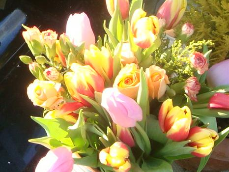 Paul's flowers add a touch of spring on a sunny February day