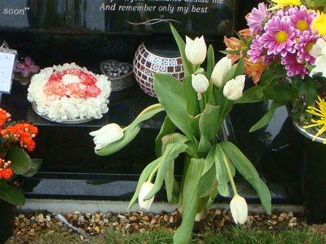 White tulips from Paul's close friend Lisa - 14th May 2011