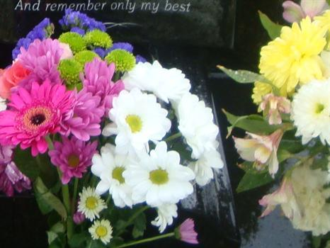Beautiful flowers for Paul from Clair and Tshequa - 6th June 2011