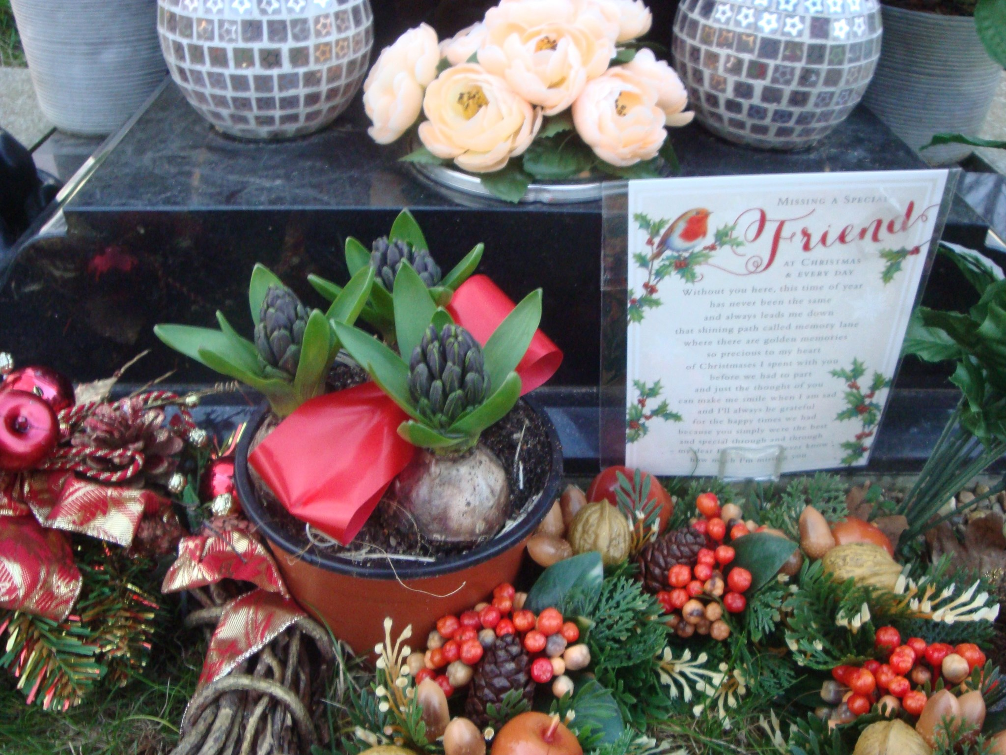 Hyacinths from Jean Dale & Christmas card from Clair, Tshequa, Matt & Nicky - 24th December 2014