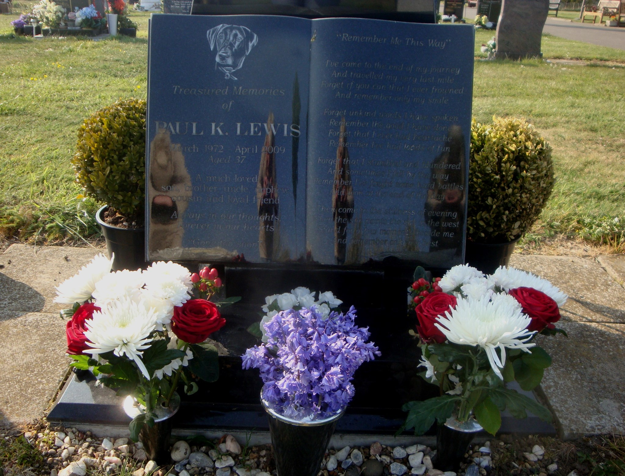 Paul's spot on St George's Day, 23rd April 2017 - beautiful flowers from Tracey