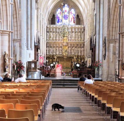 Doorkins Magnificat in a beautiful Cathedral. Glad I visited Southwark Cathedral that day.