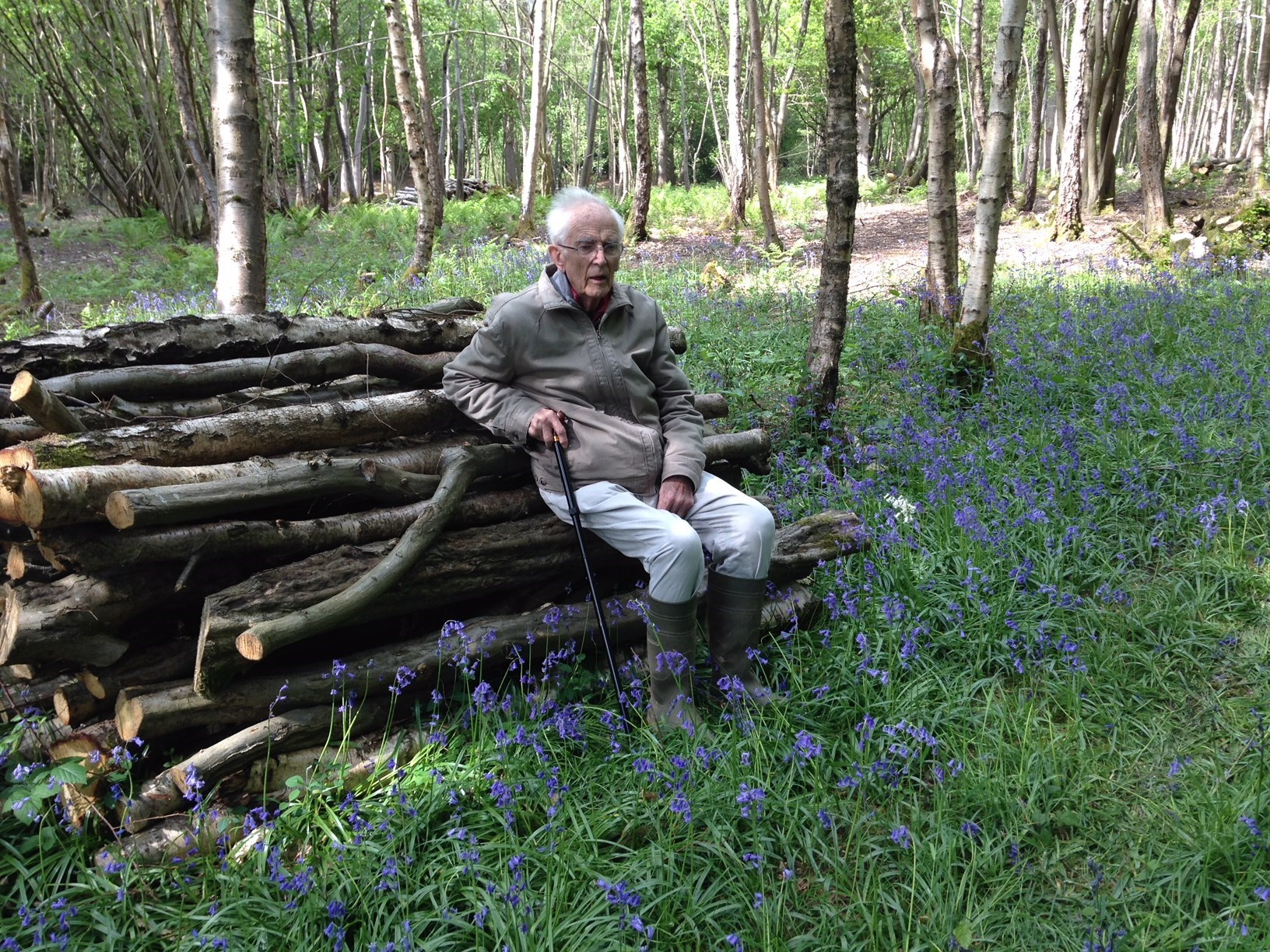 Dad loved walking in the woods at North Frith, most especially at 'bluebell time'. This was  2015.