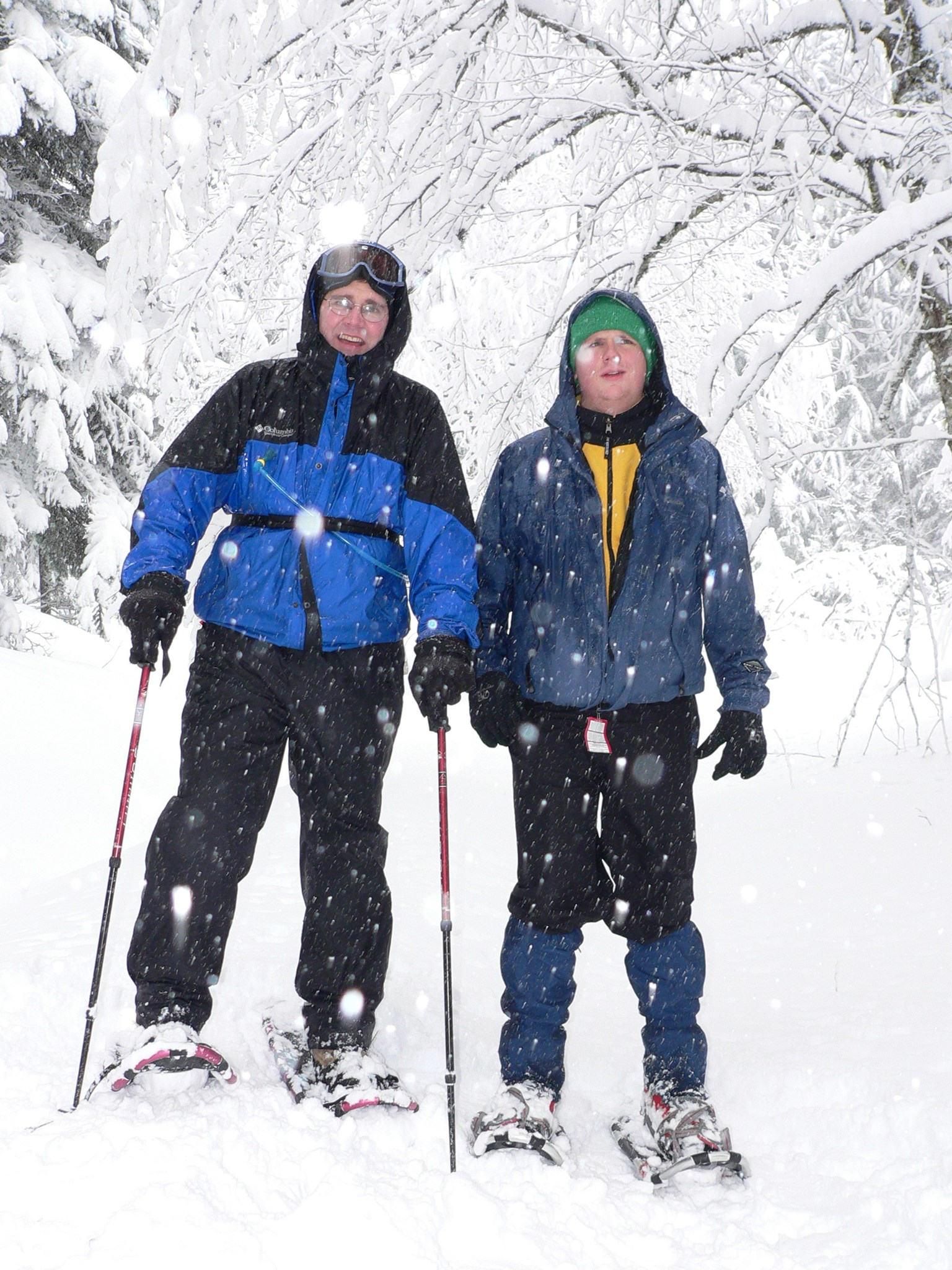 The Snow Shoe Duo