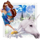 Visit the Fairytale Kingdom Remembrance Garden