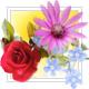 Visit the Floral Remembrance Gardens