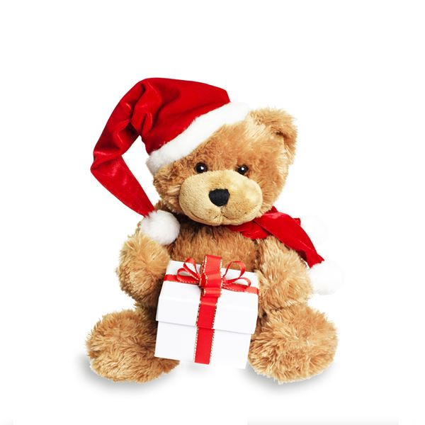 Christmas Teddy - sent on December 25th, 2020